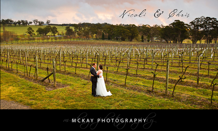 Nicoli & Chris at Centennial Vineyards Bowral